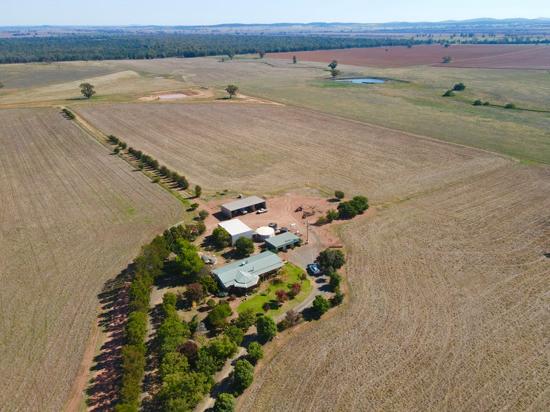 "893 "" Wheogo"" Deaths Lane, Pullabooka, NSW 2810"