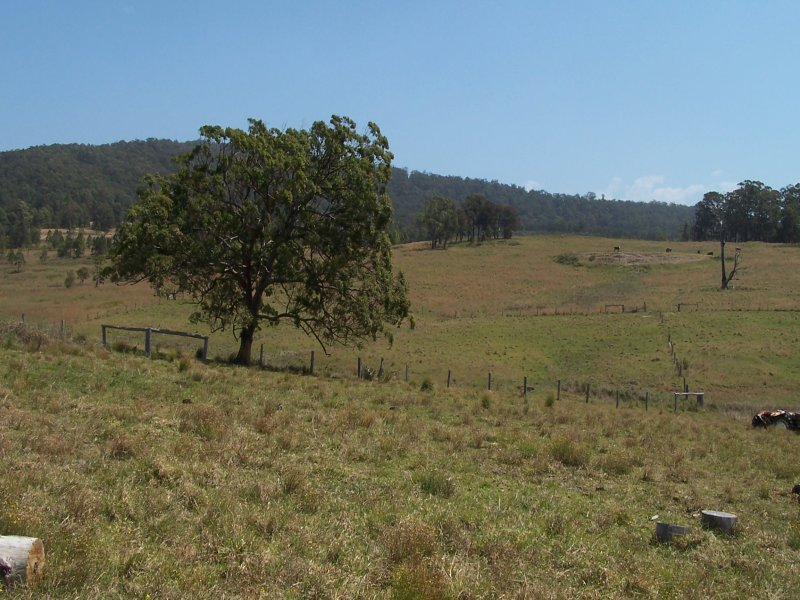 12301 Pacific Highway, Coolongolook, NSW 2423