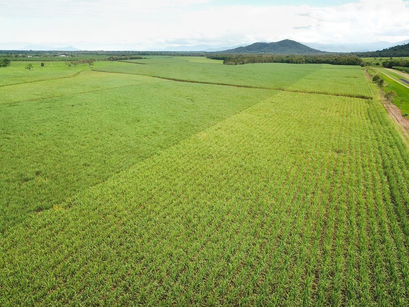 Coastal Farms, Tully, Qld 4854