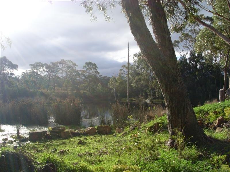 198 Lune River Road, Lune River, Tas 7109