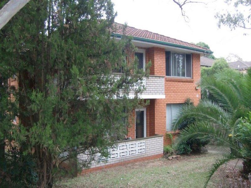1/18 Minter Street, Ashbury, NSW 2193