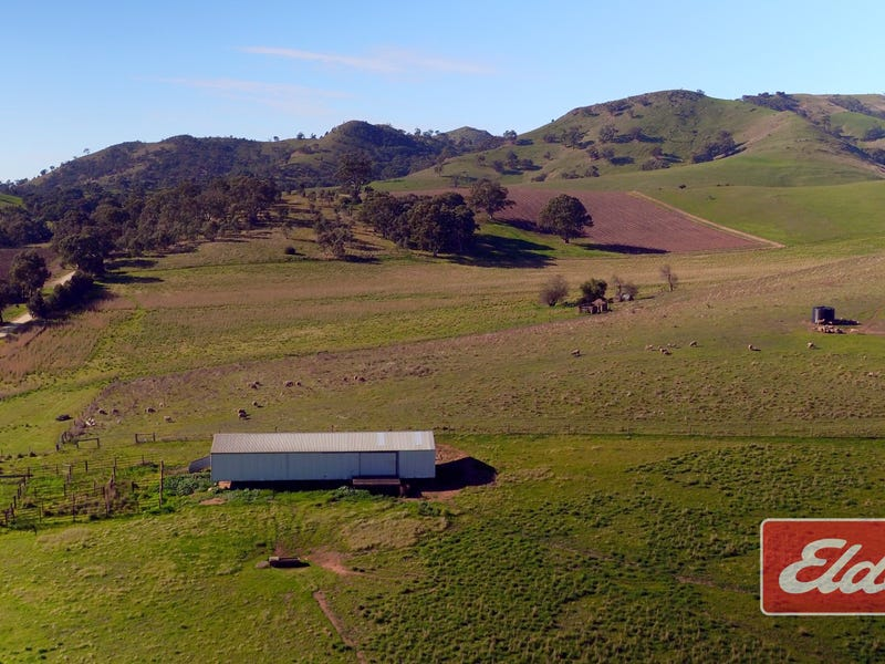 Lot 9 & 11, & Section 3182, Tweedies Gully Road, Lyndoch, SA 5351