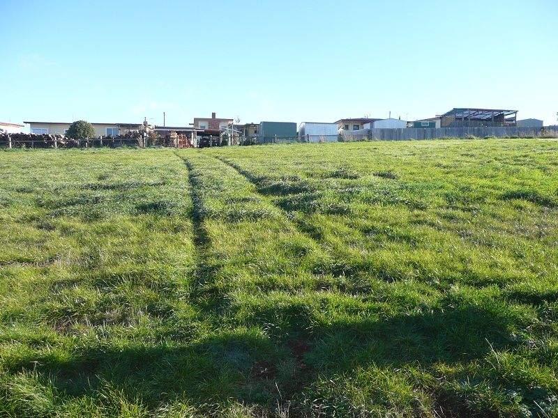 Lot 25, Marlendy Heights, Deloraine, Tas 7304