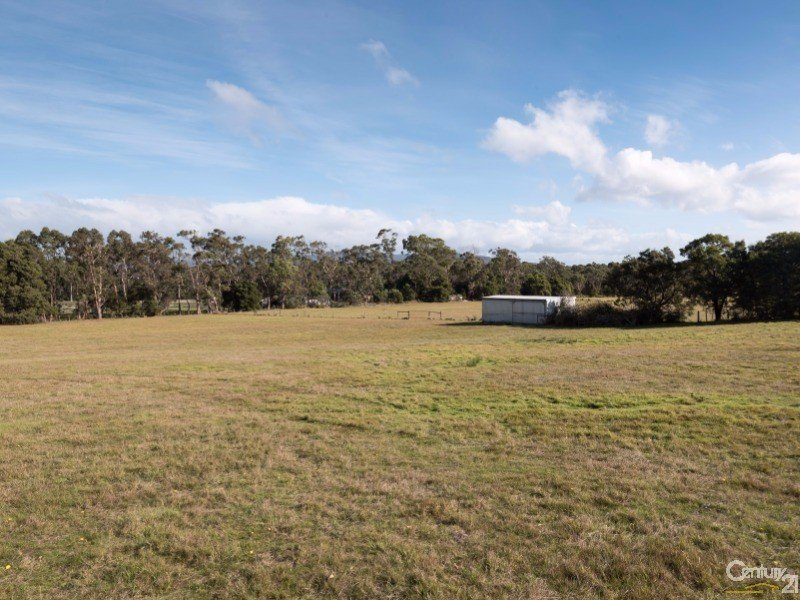 242 Moriarty Road, Latrobe, Tas 7307