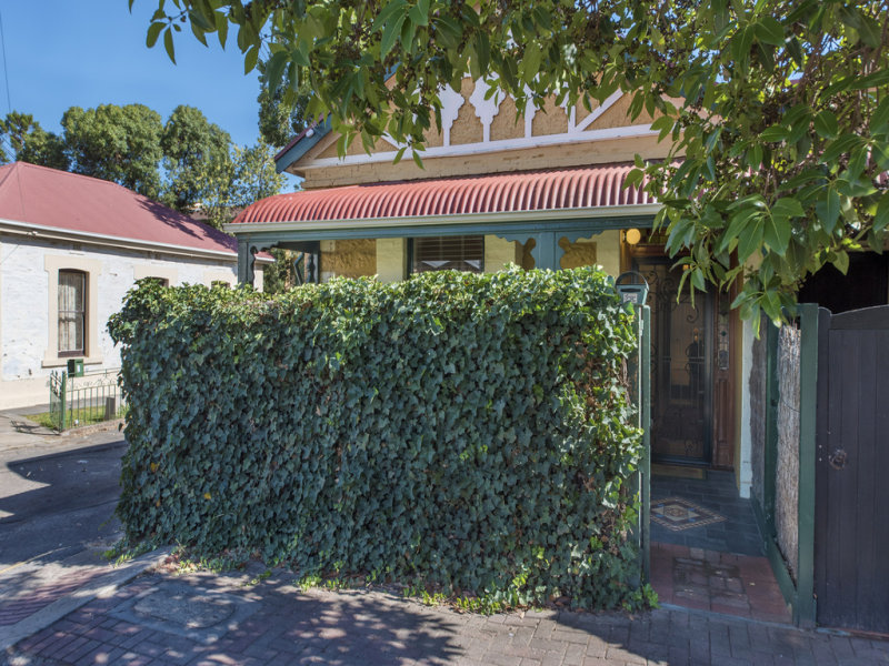 19 Colliver Street, Norwood, SA 5067