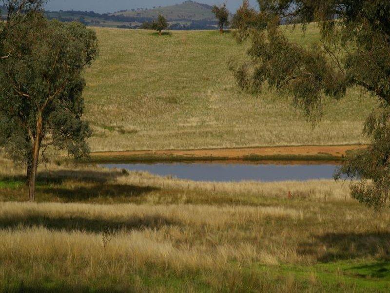 Holbrook Road, Wagga Wagga, NSW 2650