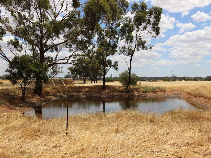 17 Pistol Range Road, Temora, NSW 2666