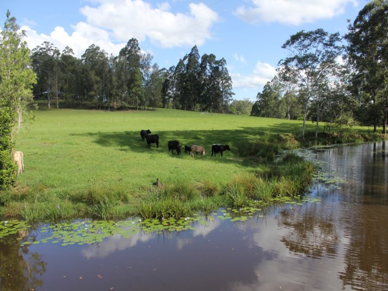 Address available on request, Mungay Creek, NSW 2440