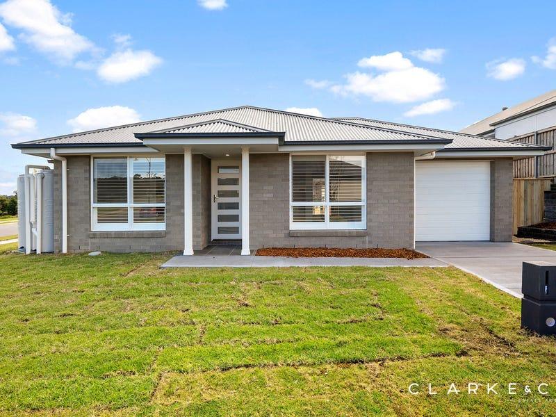 1 Longtail Street, Chisholm, NSW 2322