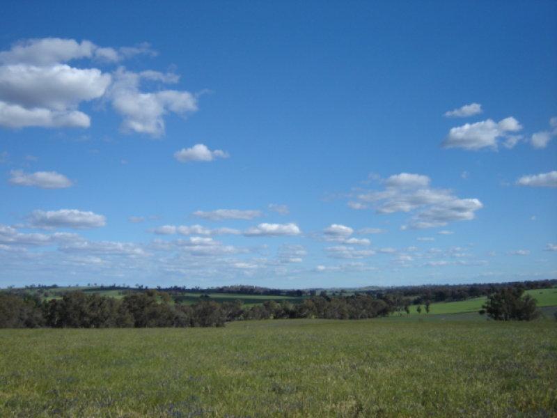 Wombat Road, Wombat, NSW 2587