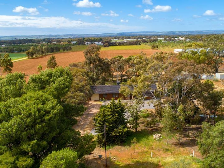 207 Short Road, Penfield Gardens, SA 5121