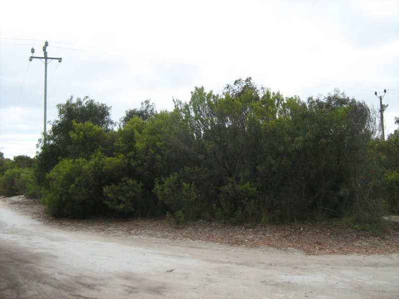 Lot 65, Second Street, Sapphiretown