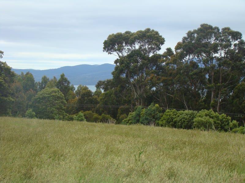 93 Littles Road, Premaydena, Tas 7185