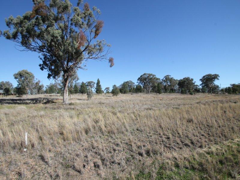4 Greentrees Drive, Quirindi, NSW 2343