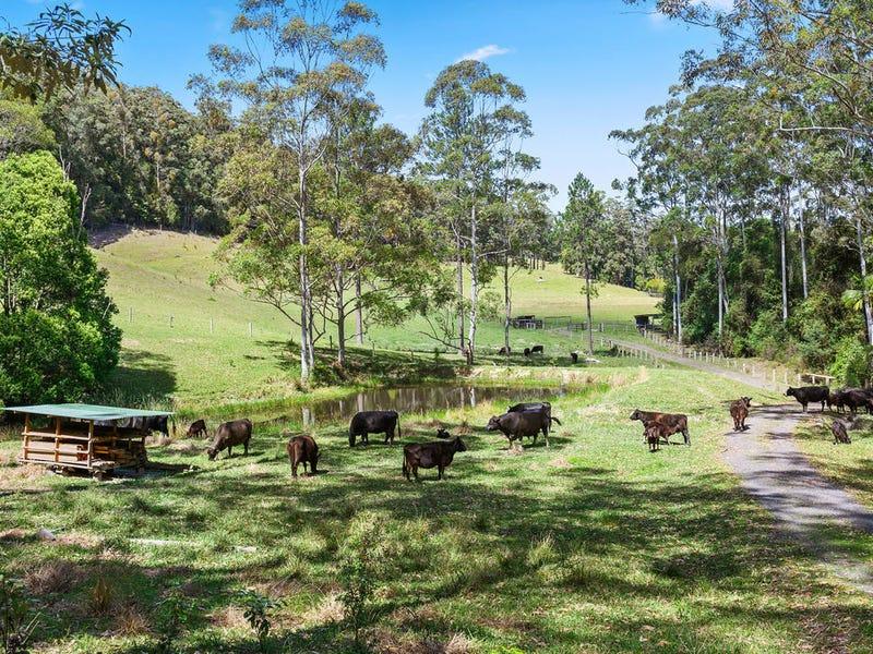 61 Convincing Ground Road, Karangi, Coffs Harbour, NSW 2450