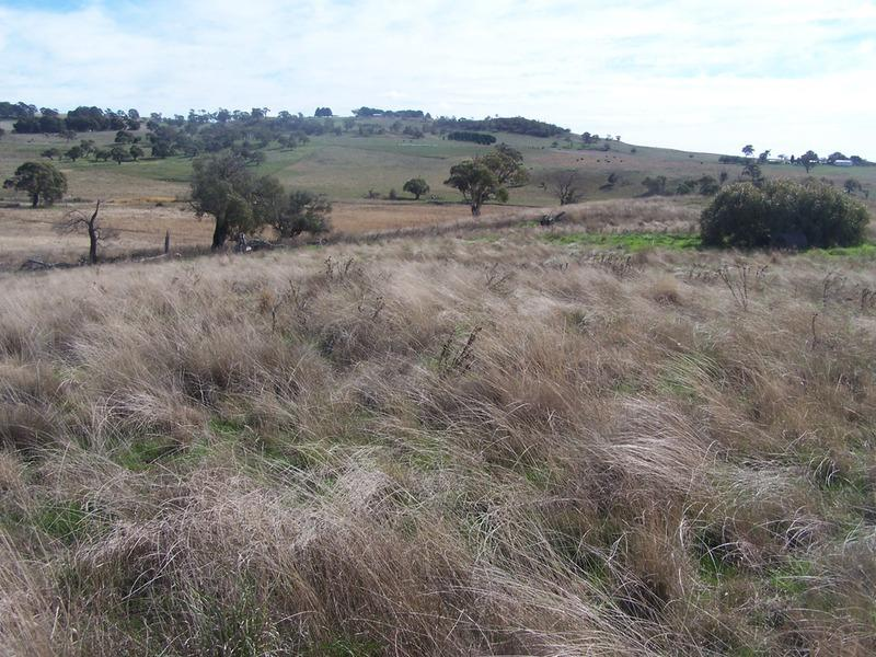 Lot 2 Hewitts Lane, Grabben Gullen, NSW 2583