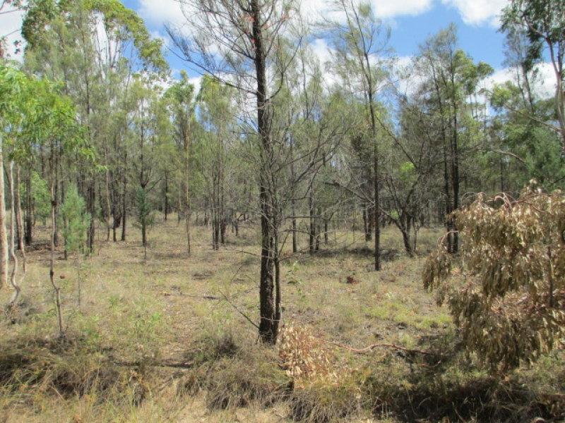 LOT 71 FORESTRY ROAD, Weranga, Qld 4405