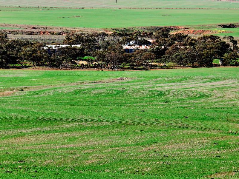 """""""Hill View""""- 2 Tivers Road, Kulpara, SA 5552"""