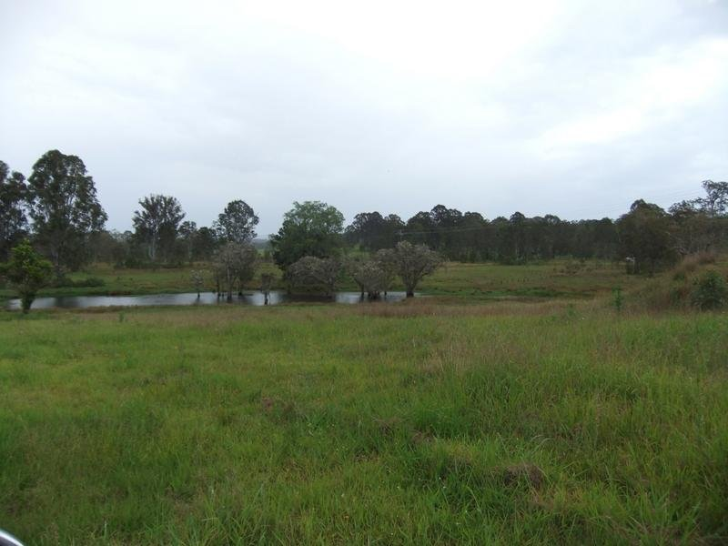 1270 Mongogarie Road, Mongogarie, NSW 2470