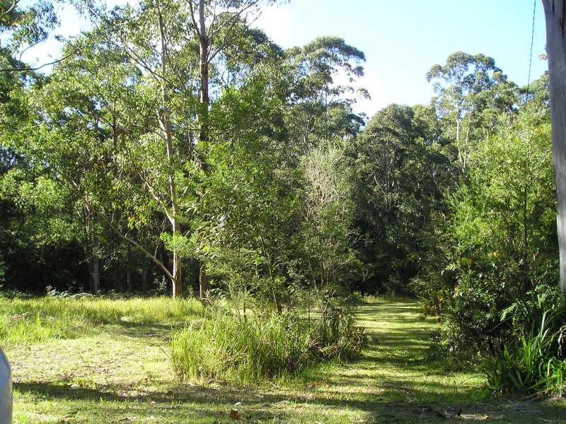Lot 12 Battunga Drive, Tomerong, NSW 2540