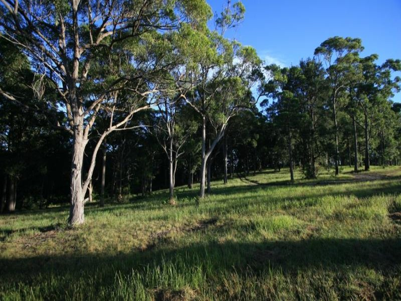 Lot 106, Duns Creek Road, Duns Creek, NSW 2321