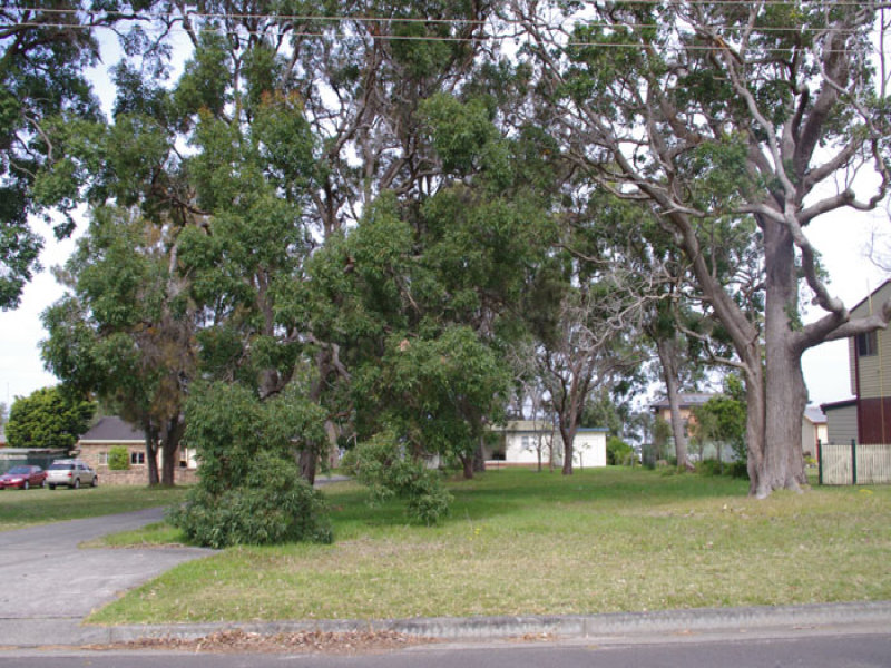 61 Greenbank Grove, Culburra Beach, NSW 2540