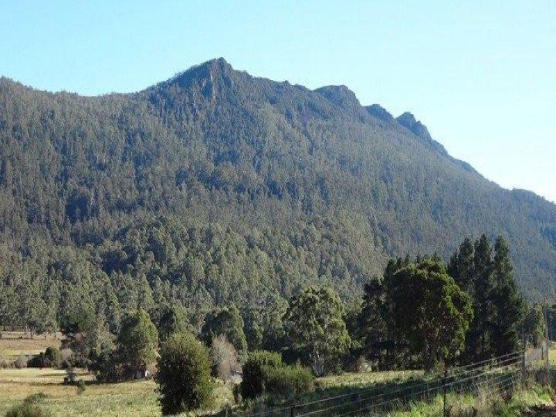 463 Mount Arthur Road, Patersonia, Tas 7259