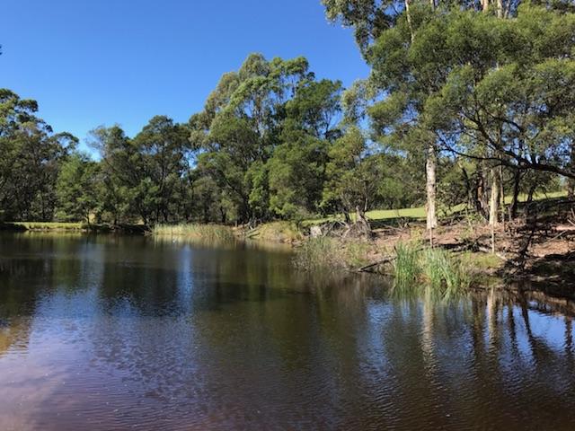 92 Israels Road, Brogo, NSW 2550