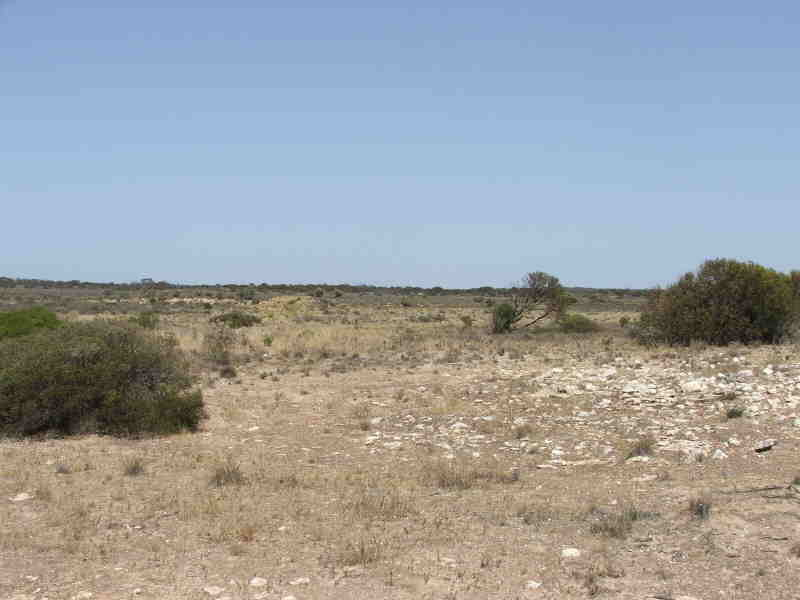 Section 6 Hundred Wallanippie, Smoky Bay, SA 5680