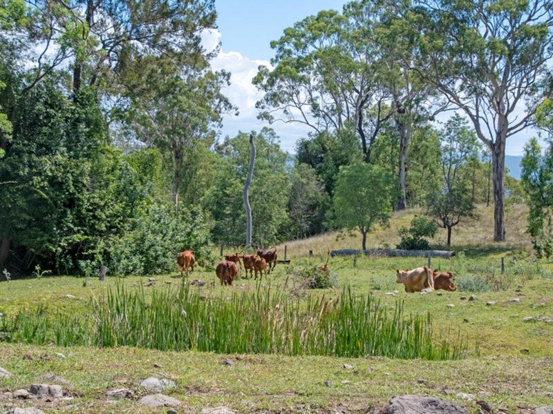59 Coleyville Cemetery Road, Coleyville, Qld 4307