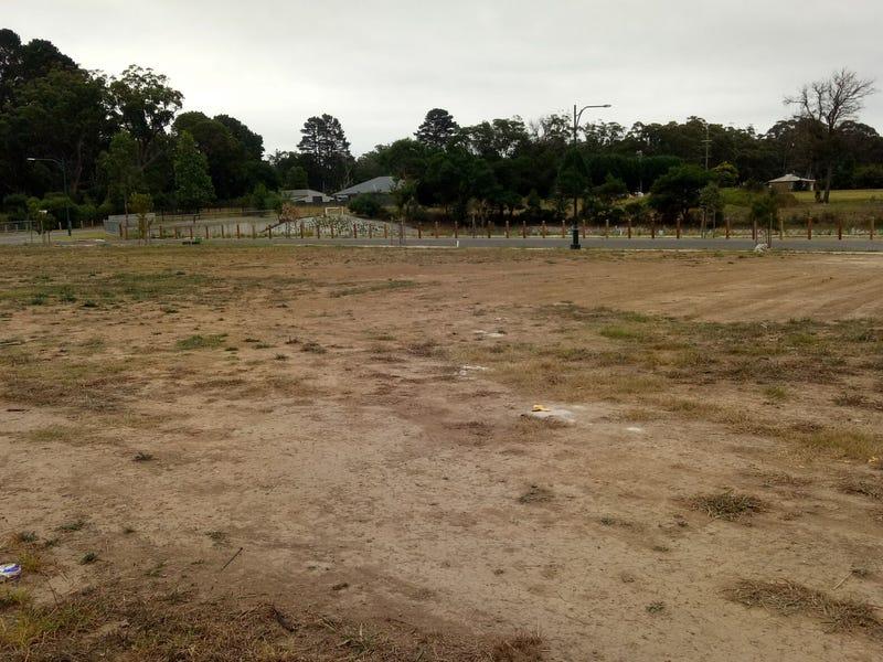 20 Mackellar Circuit, Renwick, NSW 2575