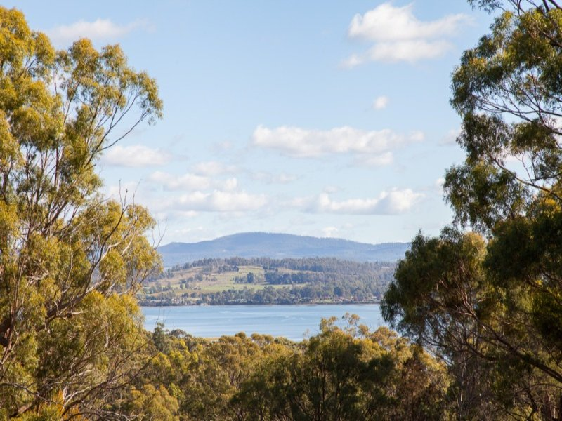12 Ardea Drive, Swan Bay, Tas 7252