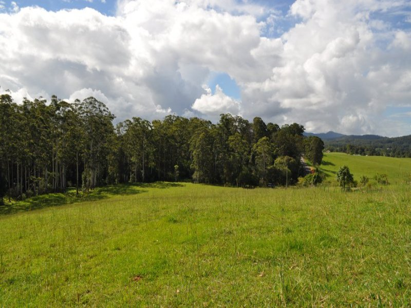 Lot 100 Grandis Glen, Congarinni North, NSW 2447