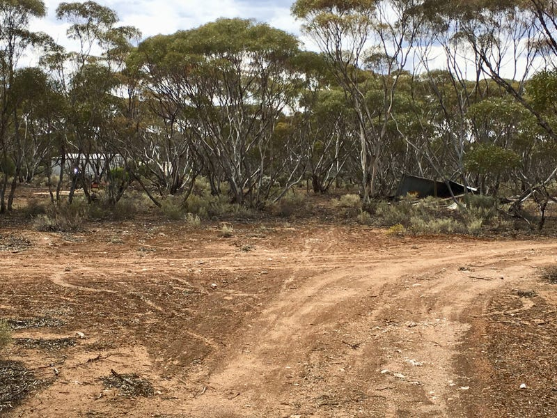 588 Mallee Acres Road, Fisher, SA 5354