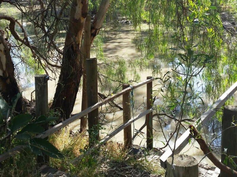 139 Billabong Creek Drive, Conargo, NSW 2710