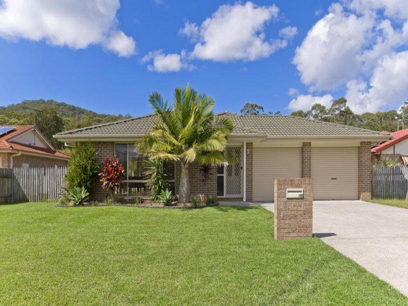 20 Lilli Pilli Close, Lakewood, NSW 2443