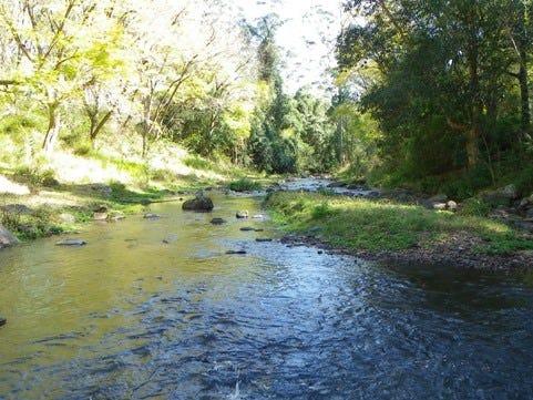 2032 Toms Creek Road, Toms Creek, NSW 2446