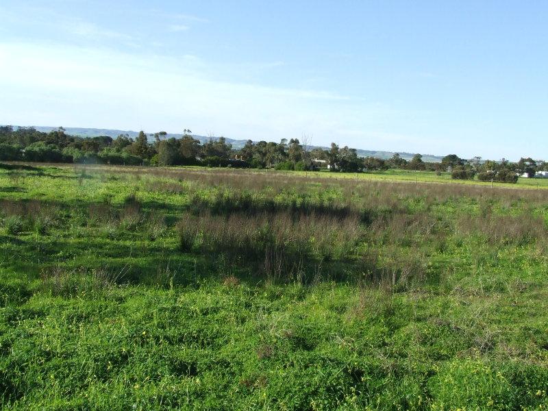 2, Stone Reserve Road, Halbury, SA 5461
