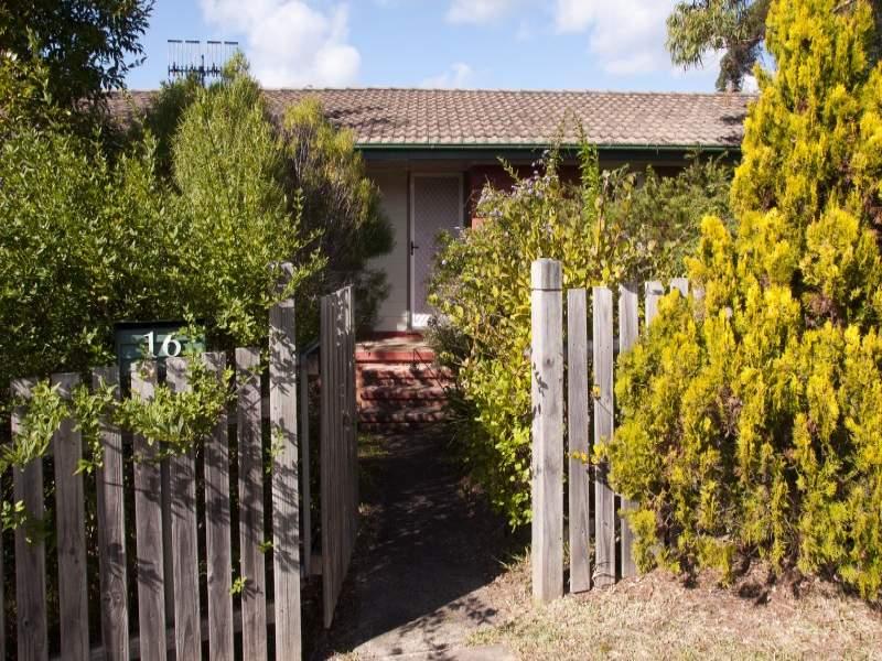 16 Aquarius Avenue, Narrawallee, NSW 2539