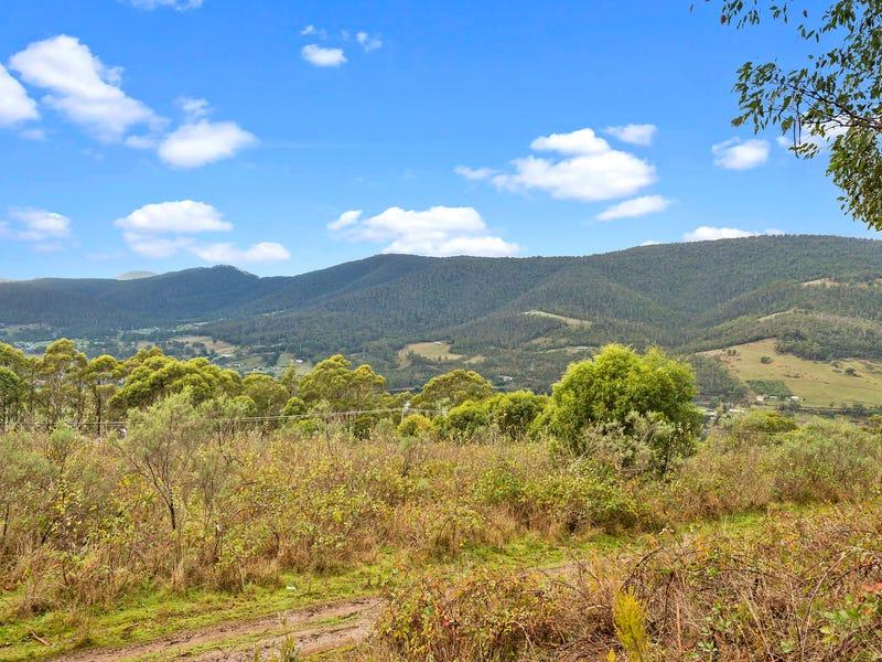 2194806 Scenic Hill Road, Huonville, Tas 7109