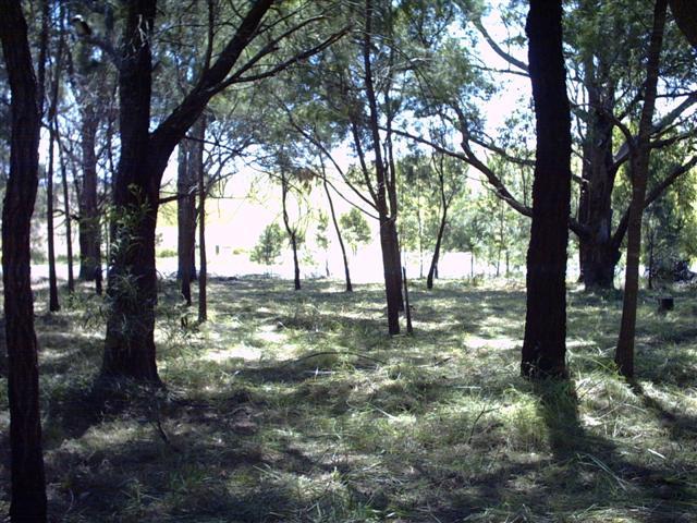 Lot 92 Burraneer Road, Coomba, NSW 2428