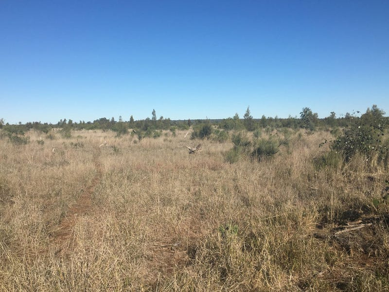 Lot 29 Seventeen Mile Lane, Roma, Qld 4455