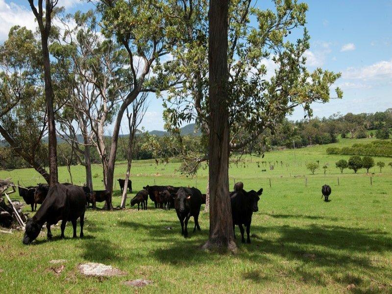 45 Cooks Rd, Calga, NSW 2250