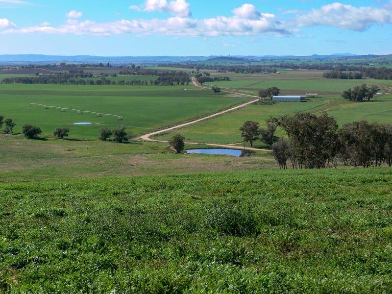 664 Fish Fossil Drive, Canowindra, NSW 2804
