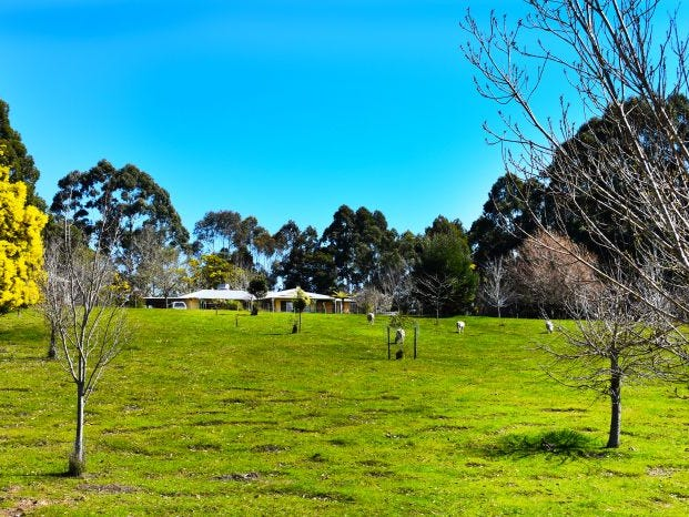 null, Nannup