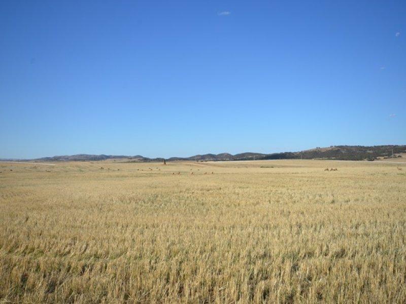 HV&Chimney Brady Creek & Kotz Rd, Robertstown, SA 5381