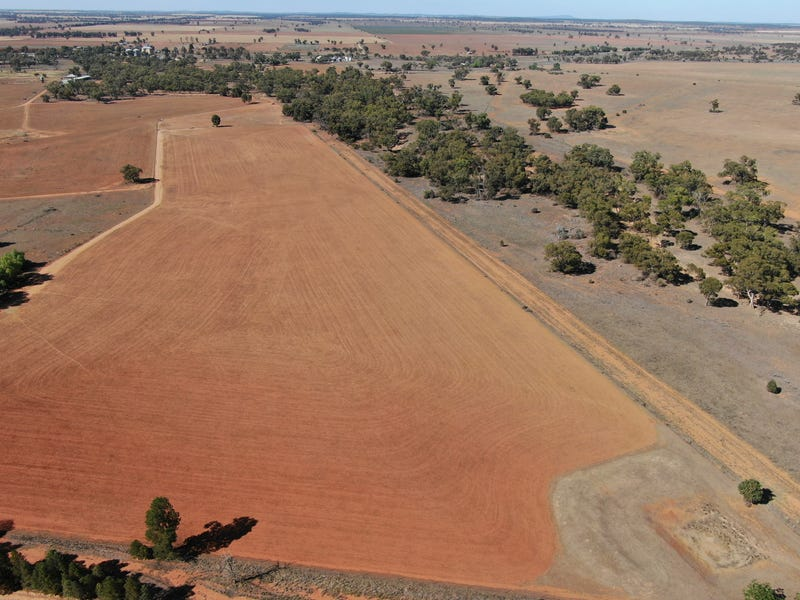 91 Wilga Plains Road, Ungarie, NSW 2669