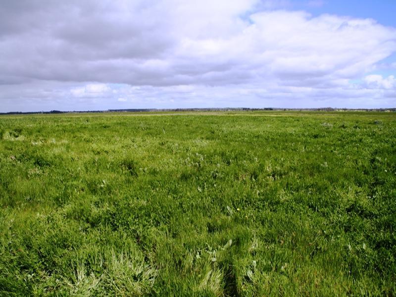 Avenue Range, via, Lucindale, SA 5272