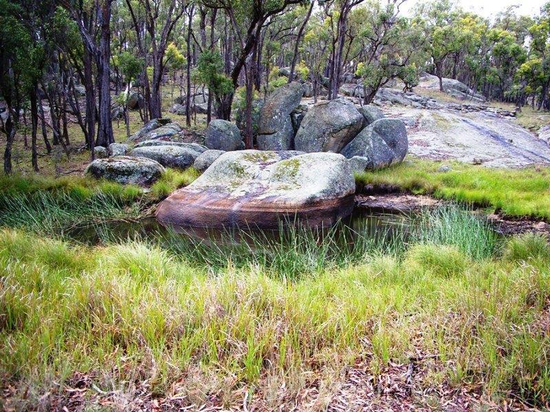 1509 Retreat Road, Uralla, NSW 2358