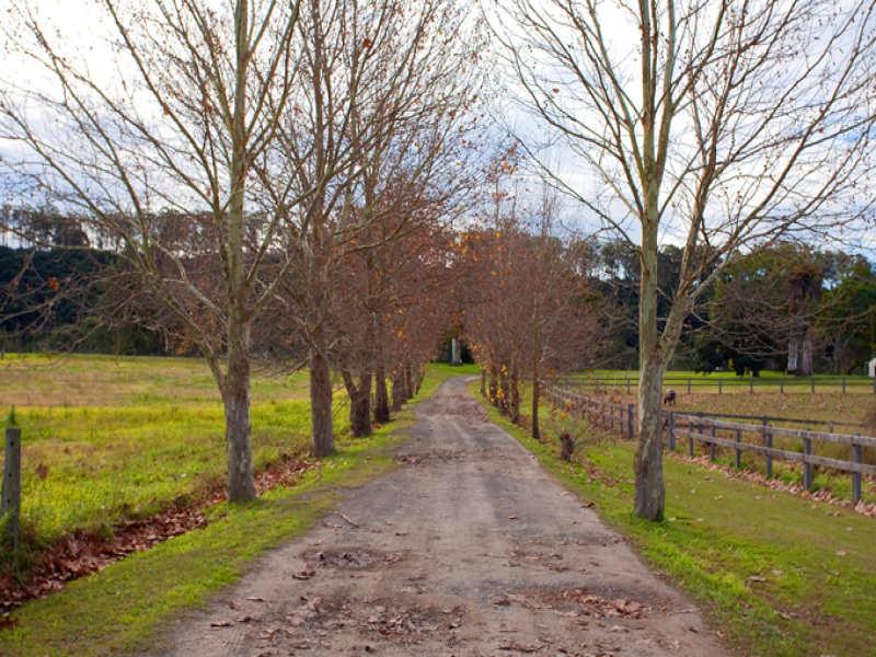 149 Edwards Lane, Richmond, NSW 2753